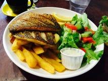 Peixes e microplaquetas Fotografia de Stock Royalty Free