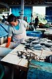 peixes e rãs da mulher no mercado local da vila imagens de stock