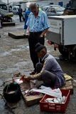 Peixes e raio da limpeza do ancião para clientes foto de stock royalty free