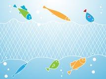 Peixes e rede de pesca Imagens de Stock
