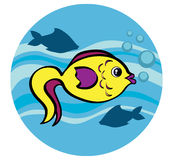 Peixes em um mar Fotos de Stock Royalty Free