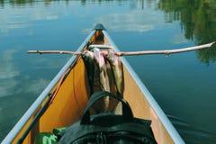 Peixes em uma vara Fotografia de Stock Royalty Free