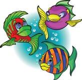 Peixes engraçados ilustração do vetor