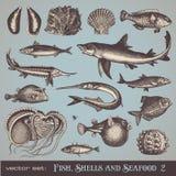 Peixes, escudos e marisco (ajuste 2) Imagem de Stock Royalty Free