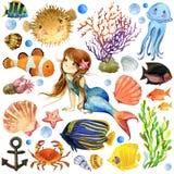 Peixes exóticos, recife de corais ilustração royalty free