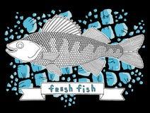 Peixes frescos 5 Ilustração Stock