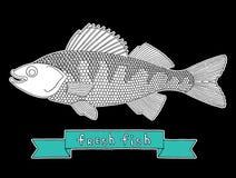 Peixes frescos 1 Ilustração Stock