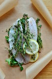 Peixes frescos com ervas e limão Imagem de Stock