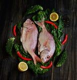 Peixes frescos com vegetais foto de stock