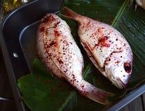 Peixes frescos com vegetais imagens de stock royalty free