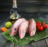 Peixes frescos com vegetais imagens de stock