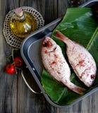 Peixes frescos com vegetais imagem de stock royalty free