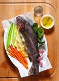 Peixes frescos crus com vegetais e especiarias Cenouras e aipo O Imagem de Stock Royalty Free