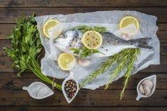 Peixes frescos da brema com as ervas e as especiarias prontas para cozinhar Fotografia de Stock