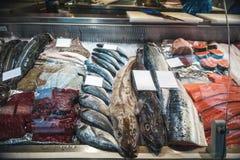 Peixes frescos deliciosos do Mar do Norte no gelo no mercado imagem de stock royalty free
