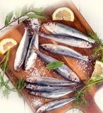 Peixes frescos do arenque pequeno Fotos de Stock Royalty Free