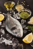 Peixes frescos do dorado no gelo com pesto Imagens de Stock