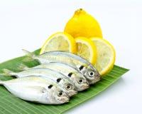 Peixes frescos e limão fotos de stock royalty free