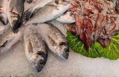 Peixes frescos e marisco no supermercado Imagem de Stock Royalty Free