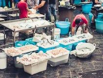 Peixes frescos e marisco para a venda no mercado de peixes de Catania, Sicília, Itália fotos de stock royalty free