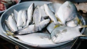Peixes frescos em um mercado Imagem de Stock