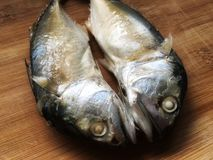 Peixes frescos gêmeos da cavala na placa de desbastamento de madeira antes de cozinhar imagem de stock