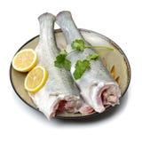 peixes frescos listrados de Canadá Fotos de Stock Royalty Free