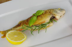 Peixes fritados Imagem de Stock