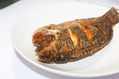 Peixes fritados do tilapia Foto de Stock