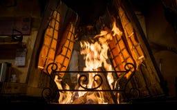Peixes fritados em fogo ardente foto de stock royalty free