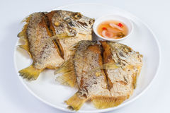 Peixes fritados na placa branca Imagens de Stock