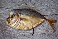 Peixes fumado na tabela de madeira, vomer Fotos de Stock Royalty Free