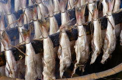 Peixes fumados Imagem de Stock