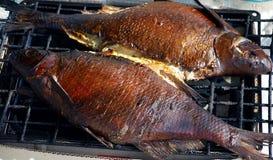 Peixes na grade, cozinhando Foto de Stock