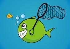 Peixes grandes e pequenos imagens de stock