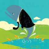 Peixes grandes em uma lagoa pequena Fotos de Stock