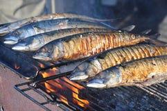 Peixes grelhados Fotos de Stock