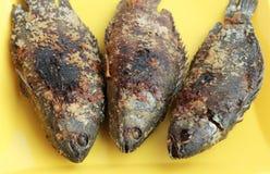 Peixes grelhados Fotos de Stock Royalty Free