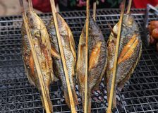 Peixes grelhados Imagens de Stock Royalty Free