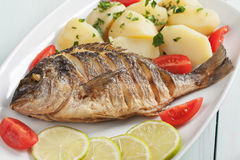 Peixes grelhados com batata bolied fotografia de stock