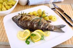 Peixes grelhados com batatas, molho, limão e cutelaria imagens de stock royalty free