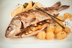 Peixes grelhados da carpa com batatas e limão dos alecrins fotos de stock