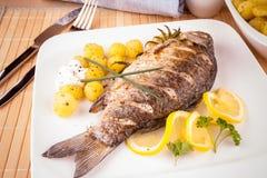 Peixes grelhados da carpa com batatas e limão dos alecrins imagens de stock