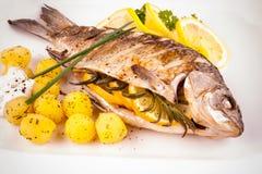Peixes grelhados da carpa com batatas e limão dos alecrins foto de stock royalty free