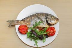 Peixes grelhados do dorado com tomates, rúcula e manjericão no pl branco Foto de Stock