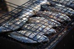 Peixes grelhados frescos imagem de stock