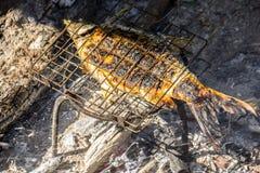 Peixes grelhados, grade do ferro, fogo, madeira, carvão vegetal Fotografia de Stock Royalty Free