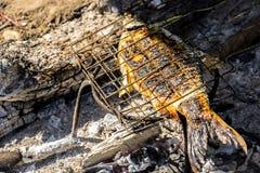 Peixes grelhados, grade do ferro, fogo, madeira, carvão vegetal Fotos de Stock Royalty Free