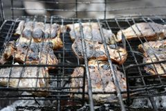 peixes grelhados no close up da grade BBQ fotos de stock