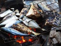 Peixes grelhados no fogão do carvão vegetal Fotos de Stock